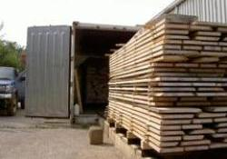 IMB warns vigilence over timber shipments originating in Southeast Asia